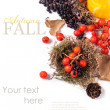Stock Photo: Autumn card with berries