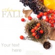 Autumn card with berries — Stock Photo #31172947