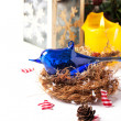 Christmas card with blue bird in nest — Foto Stock