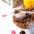 Christmas card with bird in nest — Stock Photo #31198779