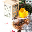 Christmas card with bird in nest — Stock Photo