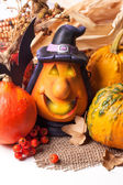 Halloween lantern and pumpkins — Stock Photo