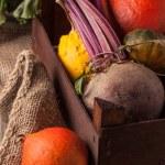 Pumpkins and beet — Stock Photo