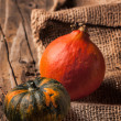 Tow mini pumpkins — Stock Photo #32244745