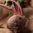 Beetroot on sackcloth — Stock Photo