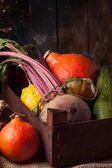 Pumpkins and beet — Stock Photo