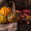 Stock Photo: Pumpkins with acorns and leaves