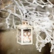Christmas lantern — Stock Photo #34051421