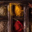 Mix of spices — Photo