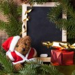 Christmas decoration with teddy bear — Stock Photo #34597291