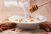 Muesli with milk and honey — Stock Photo