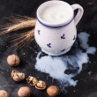 Milk and walnuts — Stockfoto