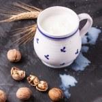 Milk and walnuts — Stock Photo #36653873