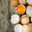 Stock Photo: Egg shell and yolk