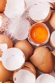 Egg shell and yolk — Stock Photo