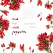 Background with Red hot chili peppers isolated — Stock Photo #38657399
