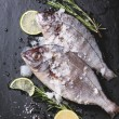 Stock Photo: Tow raw fish with rosemary over black
