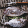 Tow raw fish with rosemary on grill — Stock Photo