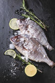 Tow raw fish with rosemary over black — Stock Photo