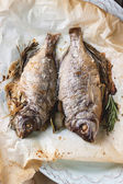 Tow grilled fish — Stock Photo