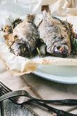 Tow grilled dorado fish — Stock Photo