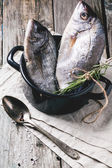 Tow raw fish with rosemary — Stock Photo