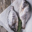 Tow raw dorado fish with rosemary — Stock Photo #42120225
