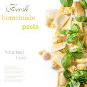 Pasta ravioli with basil — Stock Photo