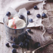 Ice cream with blueberries — Stock Photo #44335985