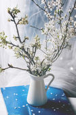 Blossoming cherry branches — Stock Photo