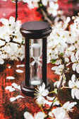 Vintage hourglass with blossom branch — Stock Photo