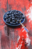 Plate of blueberries — Stock Photo