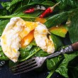 Poached egg on spinach — Stock Photo #44600761