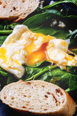 Poached egg and bread on spinach — Stock Photo