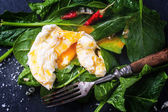 Poached egg on spinach — Stock Photo