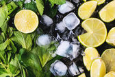 Ingredients fof mojito — Stock Photo