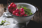 Radishes in white colander — Stock Photo