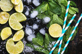 Ingredienti per il mojito — Foto Stock