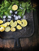 Mojito ingredience — Stock fotografie