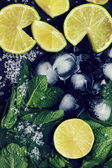 Ingredients for mojito — Stock Photo