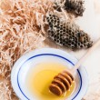 Plate of honey with honeycombs — Stock Photo #50068939