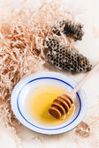 Plate of honey with honeycombs — Stock Photo