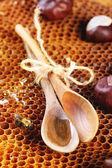мед и орехи — Стоковое фото