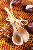 Miel y nueces — Foto de Stock