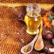 Honey and nuts — Stock Photo #50873675