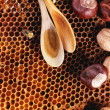 Honey and nuts — Stock Photo #51273139