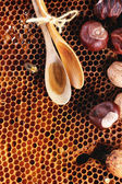 Honey and nuts — Stock Photo