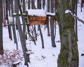 Schnee bedeckte Vogelhaus — Stockfoto