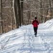 Winter running — Stock Photo #21143723
