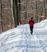 Winter running — Stock Photo